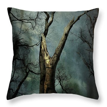 Appeal To The Sky Throw Pillow by Cynthia Lassiter