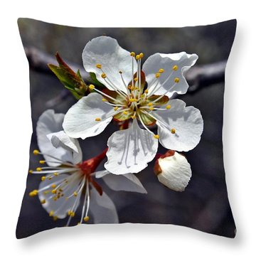 Throw Pillow featuring the photograph Apple Blossom 3 by Henry Kowalski