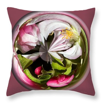 Apple Blossom Globe Throw Pillow by Phyllis Denton