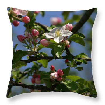 Throw Pillow featuring the photograph Apple Blossoms by Henry Kowalski