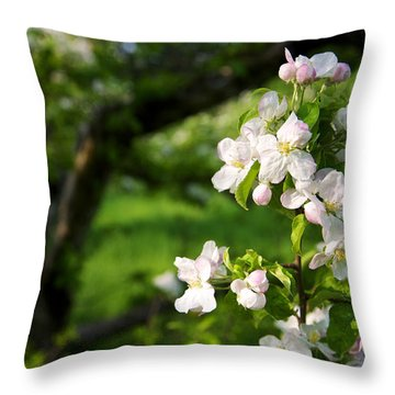 Apple Blossoms In The Orchard Throw Pillow