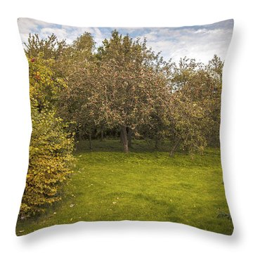 Apple Orchard Throw Pillow by Amanda Elwell