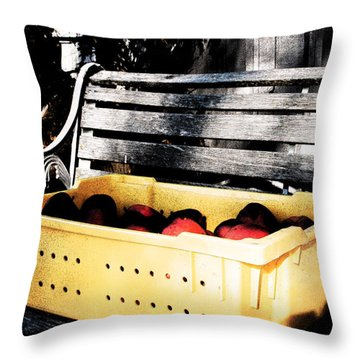 Throw Pillow featuring the photograph Apple Picking by Meaghan Troup