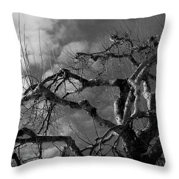 Apple Tree Bw Throw Pillow