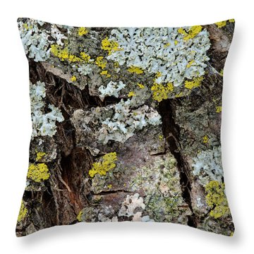 Apple Tree Lichens Throw Pillow