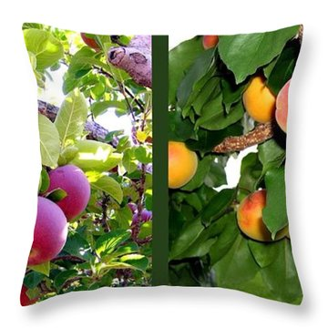 Throw Pillow featuring the photograph Apples And Apricots by Will Borden