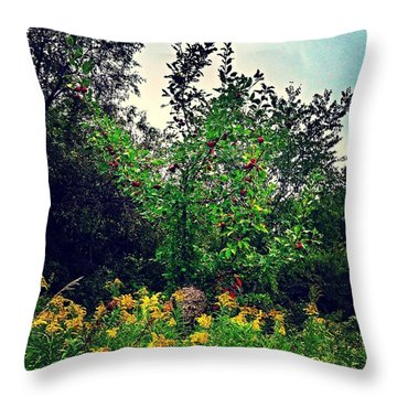 Apples And Hornets 2 Throw Pillow by Garren Zanker