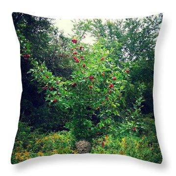 Apples And Hornets Throw Pillow by Garren Zanker