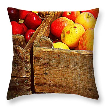 Throw Pillow featuring the photograph Apples In Old Bin by Miriam Danar