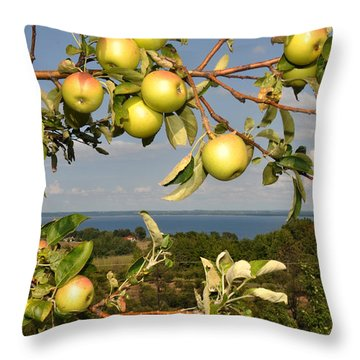 Apples Over Grand Traverse Bay Throw Pillow by Diane Lent