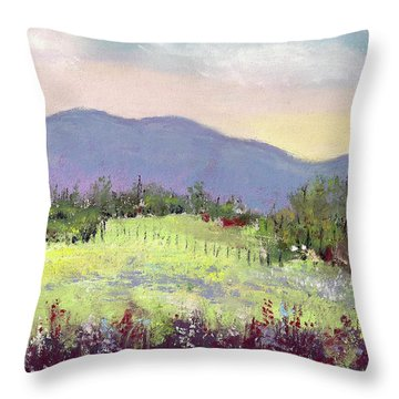 Approaching Home Throw Pillow by David Patterson