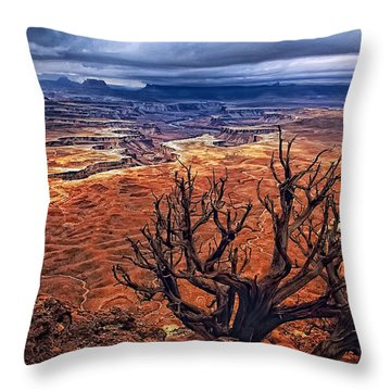 Throw Pillow featuring the photograph Approaching Storm by Priscilla Burgers