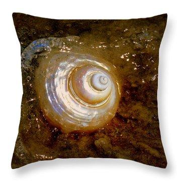 Apricot Oceans Throw Pillow by Karen Wiles