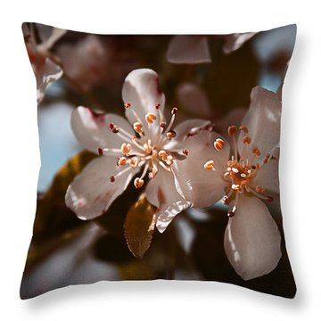 April In Colors Throw Pillow