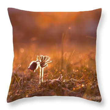April Morning Throw Pillow