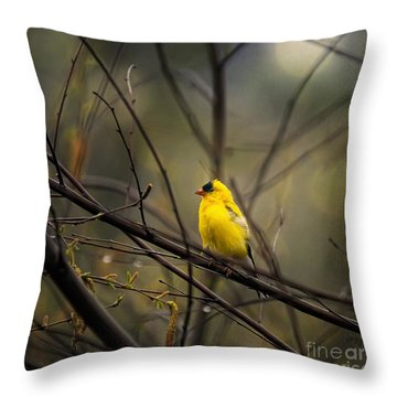 April Showers In Square Format Throw Pillow