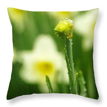 Throw Pillow featuring the photograph April Showers by Joan Davis