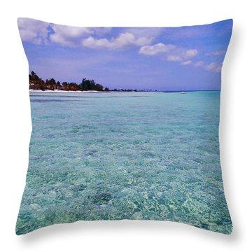Aqua Blue Throw Pillow by Carey Chen