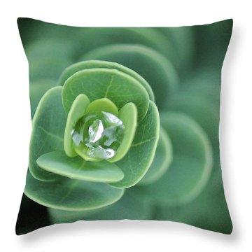 Aqua Gem Throw Pillow by Craig Wood