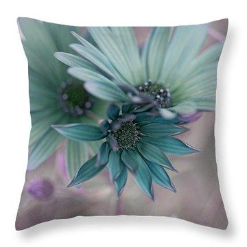 Aqua Gerberas Throw Pillow by Bonnie Bruno