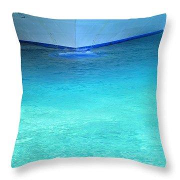 Aqua Throw Pillow by Randall Weidner