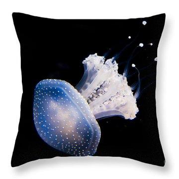 Aquarium Berlin Throw Pillow