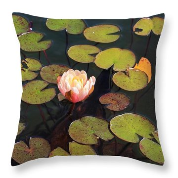Aquatic Garden With Water Lily Throw Pillow