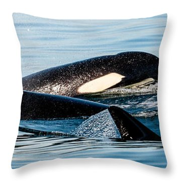 Aquatic Immersion Throw Pillow