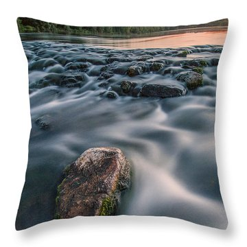 Aquatic Metalic Throw Pillow by Davorin Mance
