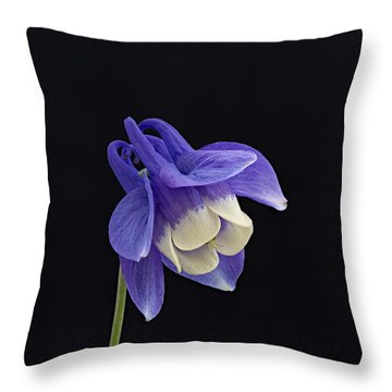 Aquilegia Flabellata -1 Throw Pillow