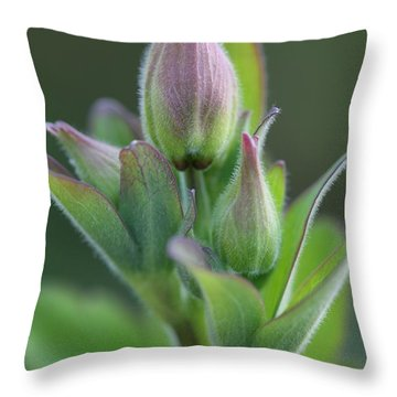 Aquilegia In Bud Throw Pillow by Mark Severn