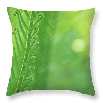Throw Pillow featuring the photograph Arabesque by Evelyn Tambour