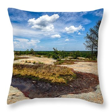 Arabia Mountain Preserve Throw Pillow