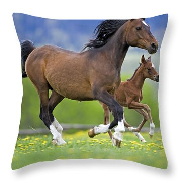 Arabian Bay Mare And Foal Throw Pillow