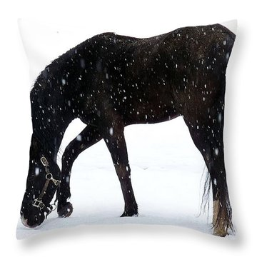 Throw Pillow featuring the photograph Arabian Snow by Julia Hassett
