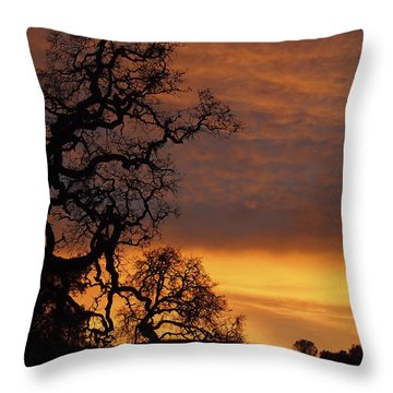 Throw Pillow featuring the photograph Arastradero Open Space Preserve Sunset by Priya Ghose