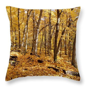 Arboretum Trail Throw Pillow