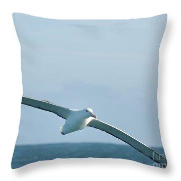 Arbornos In Flight Throw Pillow
