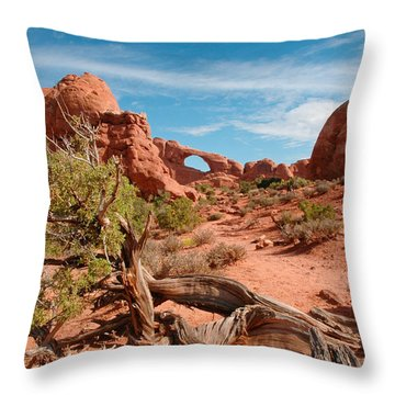 Arches National Park Throw Pillow by Donald Fink