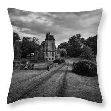 Architectural Treasure Bw Throw Pillow by Susan Candelario