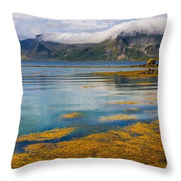 Arctic Circle Paradise Throw Pillow by Maciej Markiewicz