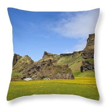 Arctic Meadow Throw Pillow