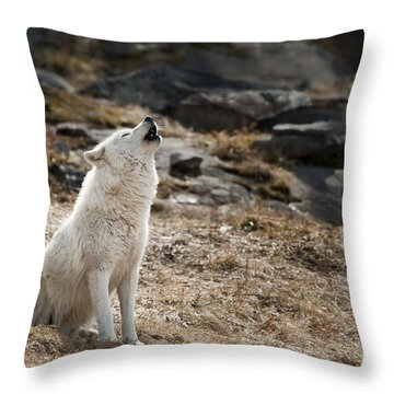 Throw Pillow featuring the photograph Arctic Wolf Howling by Wolves Only