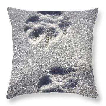 Arctic Wolf Tracks Throw Pillow