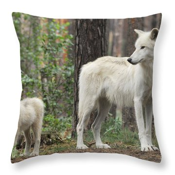 Arctic Wolf With Pup, Canis Lupus Albus Throw Pillow