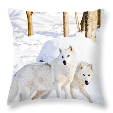 Arctic Wolves Throw Pillow by Cheryl Baxter