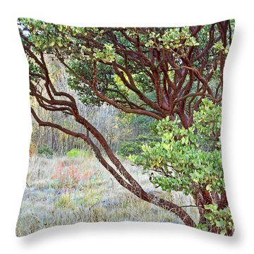 Throw Pillow featuring the photograph Arctostaphylos Hybrid by Kate Brown