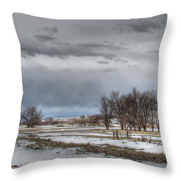 Ardmore Prairie Throw Pillow