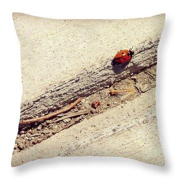 Arduous Journey Throw Pillow