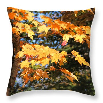 Are They Orange Or Yellow Throw Pillow by Susan Crossman Buscho